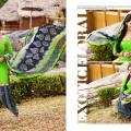 Lime green image